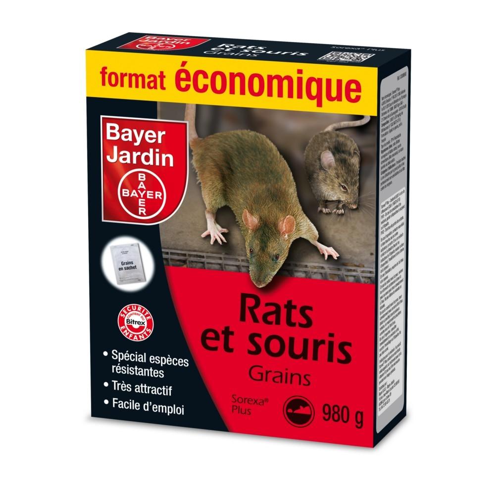 anti souris efficace