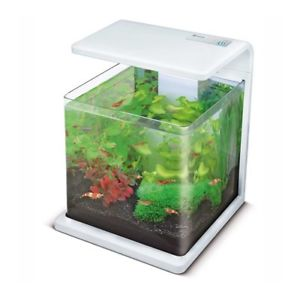 aquarium 15l