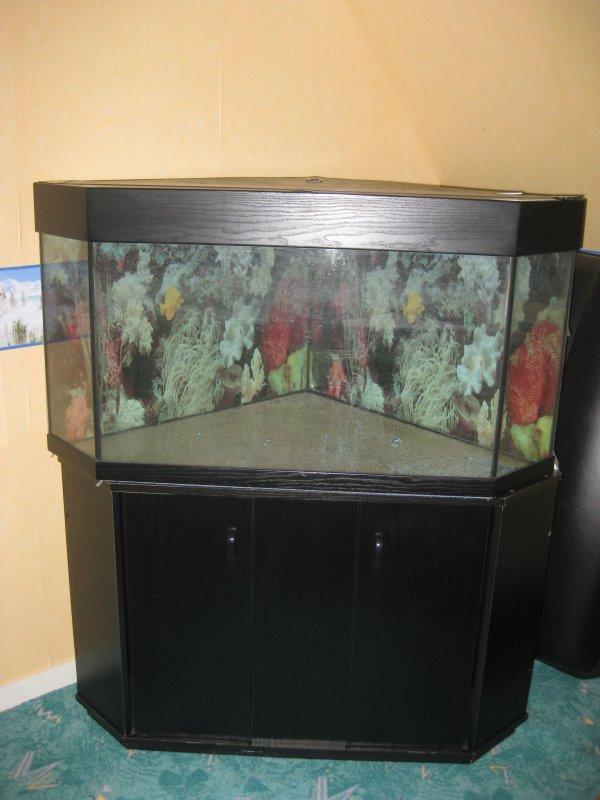 aquarium d'angle occasion
