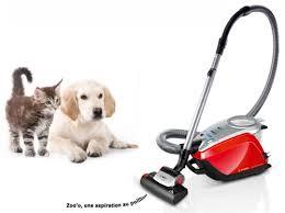 aspirateur puissant pour poils d'animaux