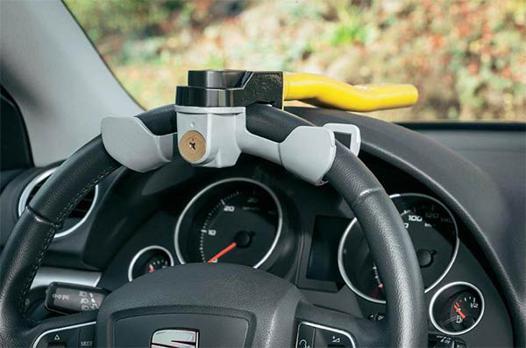 canne de protection pour voiture