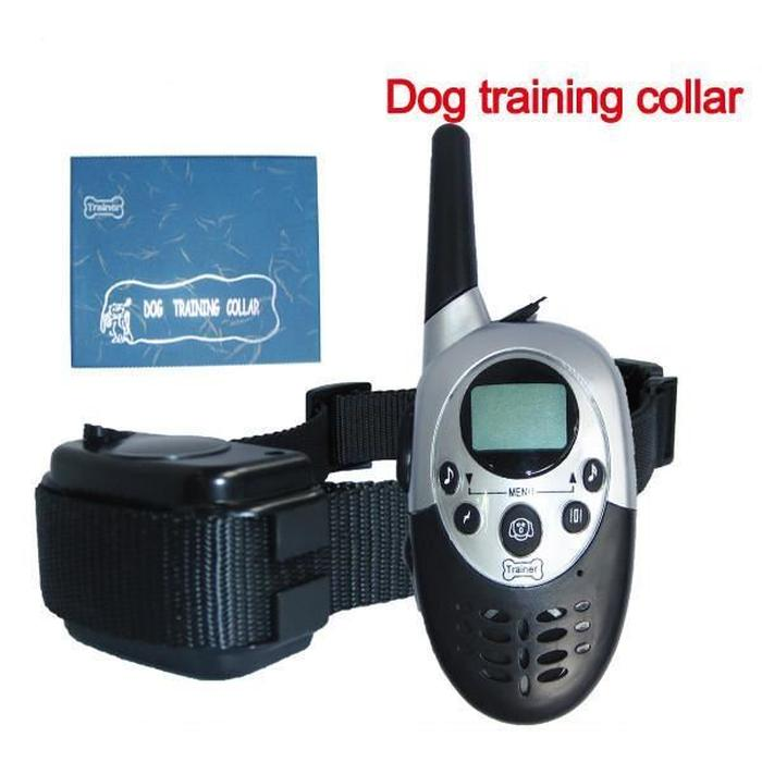 collier de dressage rechargeable pour chien
