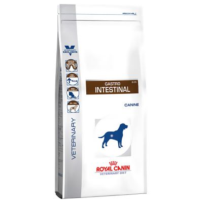croquettes gastro intestinal chien