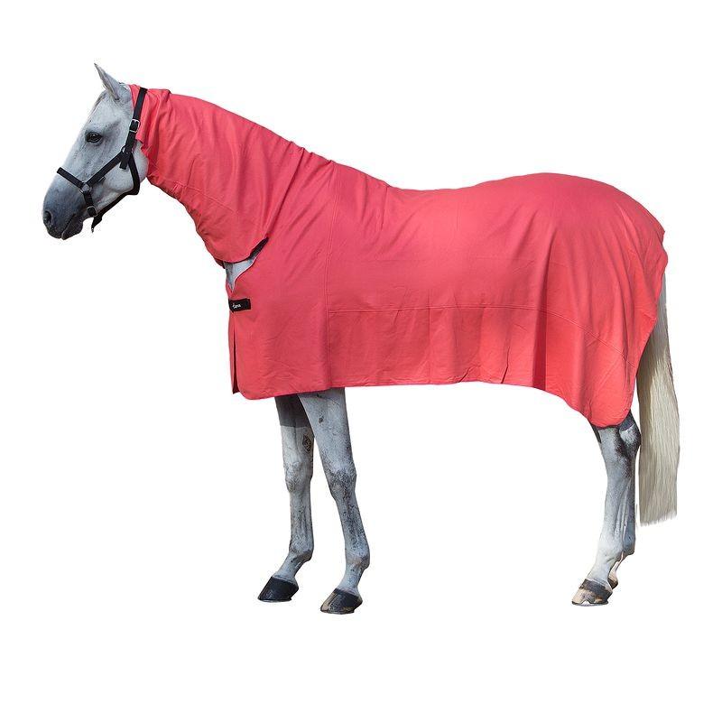 decathlon cheval