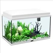 gamme vert aquarium