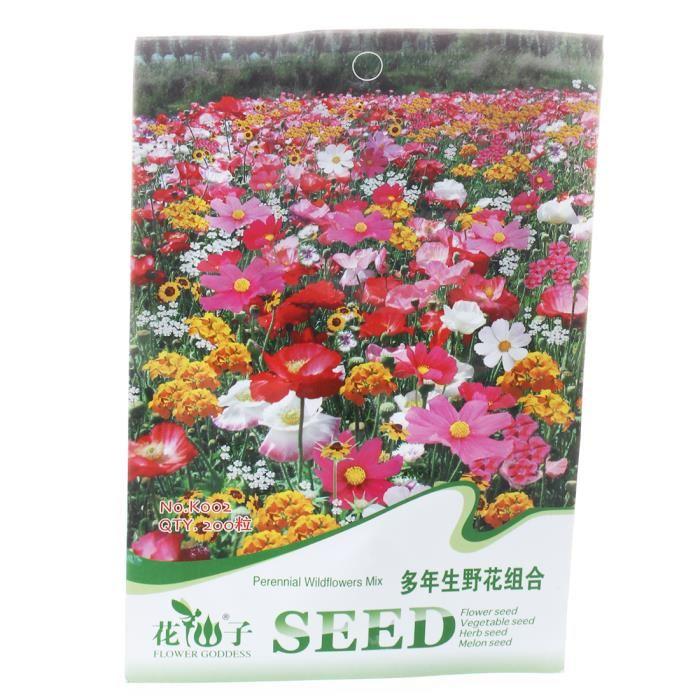 graine de fleurs pas cher