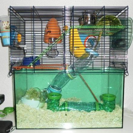 grande cage gerbille