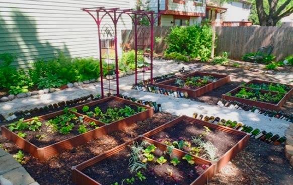légumes d ombre