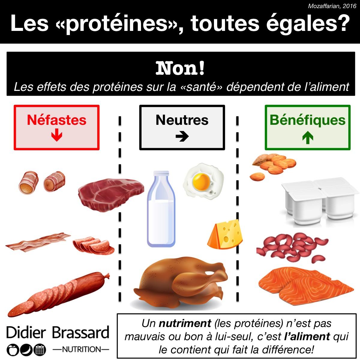 les proteines dans les aliments
