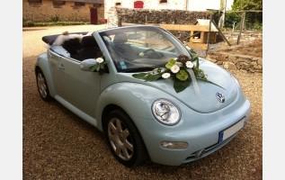 new beetle  de consommateur