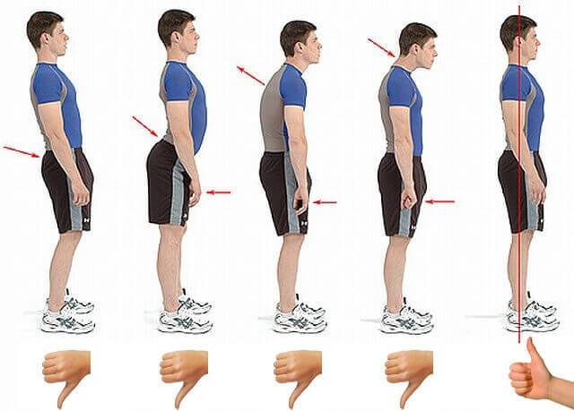 posture dos droit