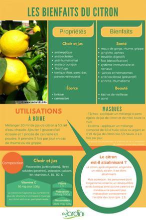 propriété citron