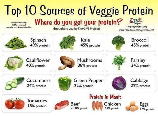 proteines vegetale liste