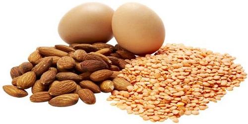 riche en proteine