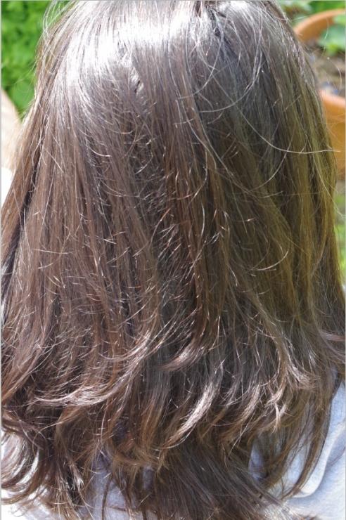 sauge et cheveux
