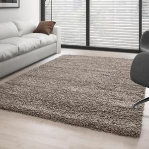 tapis salon pas cher