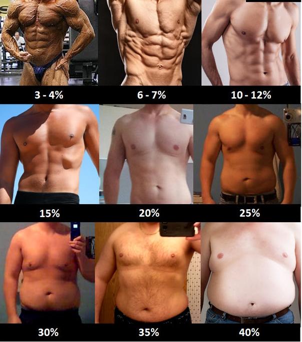 taux graisse